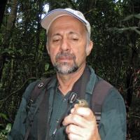 Gustavo Alberto Rodríguez