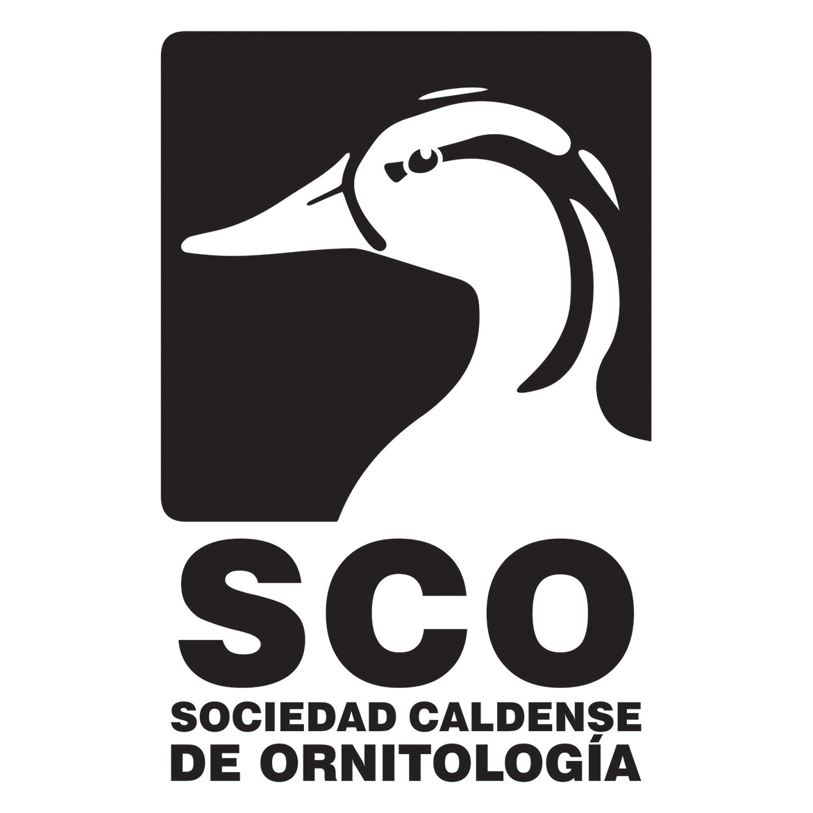 Sociedad Caldense de Ornitología SCO