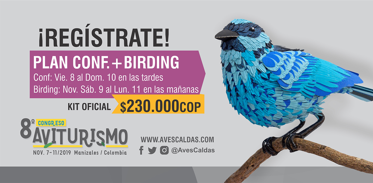Plan Conf.+Birding